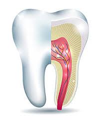 endodontics-root-canal-midtown-nyc-expert-03